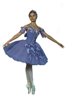 621bc29a4ff7 Sleeping Beauty Fairies Costume & Sophie Morgan And Artists Of The ...